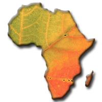 Road Traveled - Africa